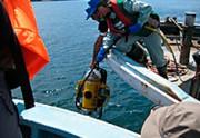 海の再生力探査